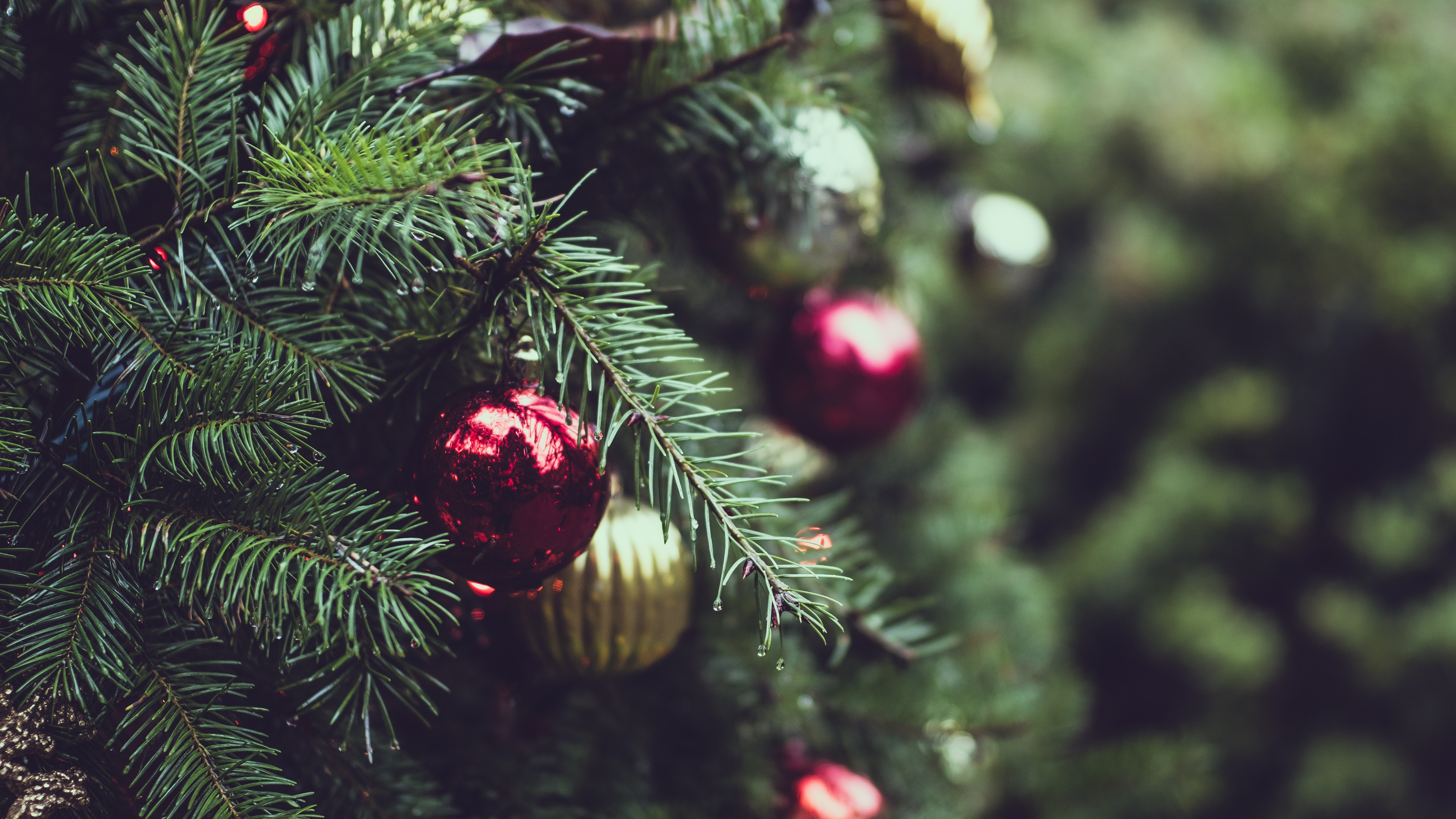 Entspannt mit Brot und Gebäck durch die Vorweihnachtszeit