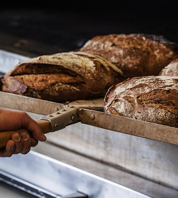 Das sind die 5 häufigsten Fragen rund ums Brot – und die Antworten