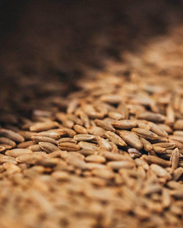 Das beste Korn. Heimische Getreidearten aus ernährungs-wissenschaftlicher Sicht